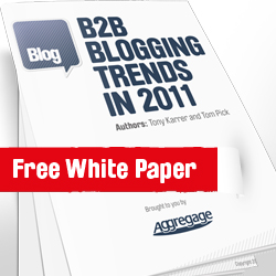 B2b-Blogging-White-Paper